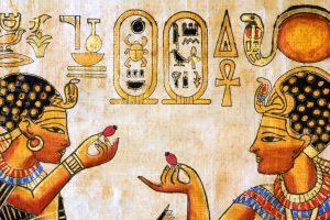 rosehip Hieroglyphs